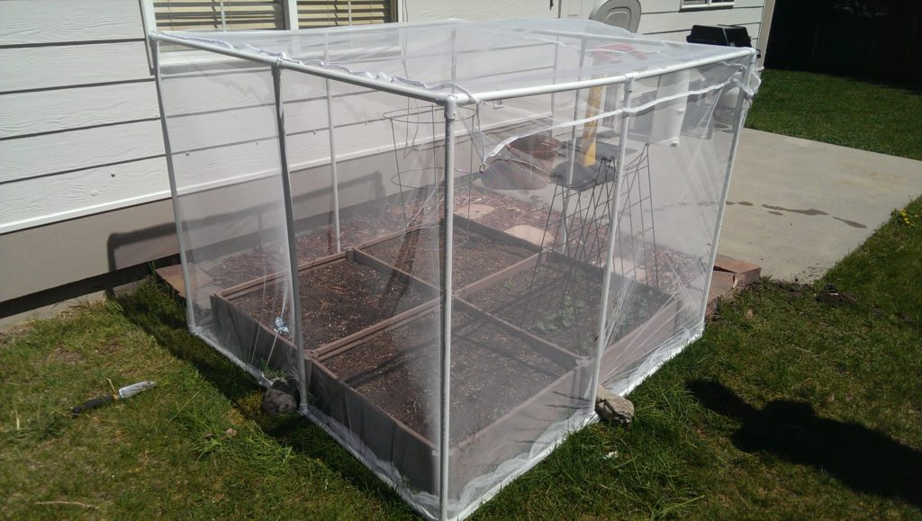 Box garden w/ netting